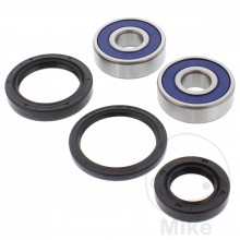 GL1000-GL1100 All Balls Racing wheel bearings